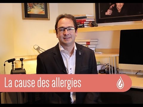 Question à l'allergologue: La cause des allergies
